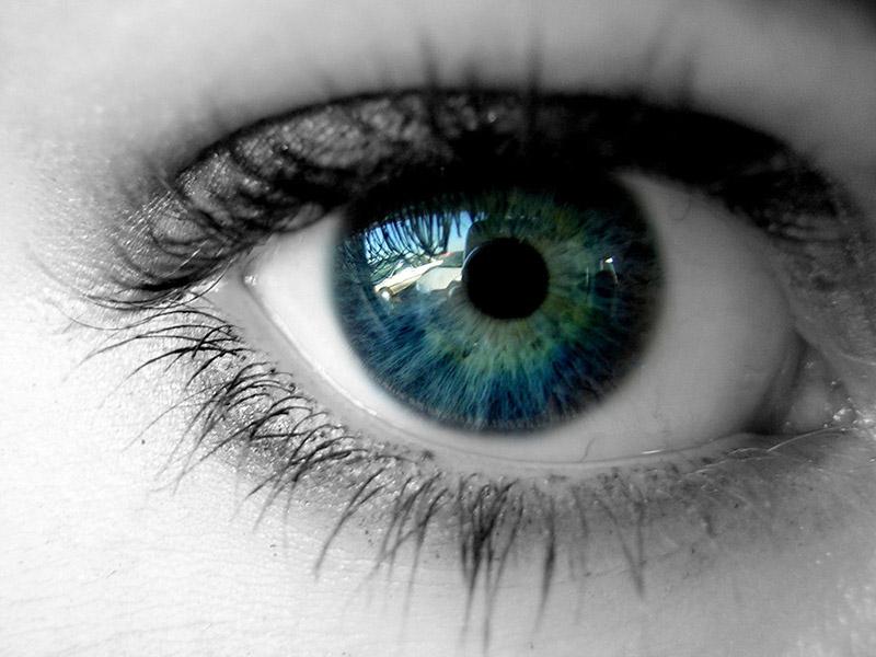 Νυχτερινή όραση με σταγόνες χλωροφύλλης