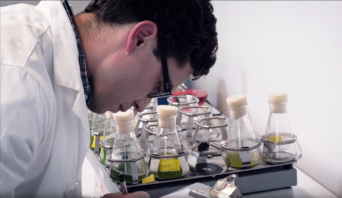 Βιοδιασπώμενο μελάνι εκτυπωτών από φύκη